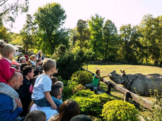 WARSAW ZOO. MORE THAN A TYPICAL ZOO GARDEN